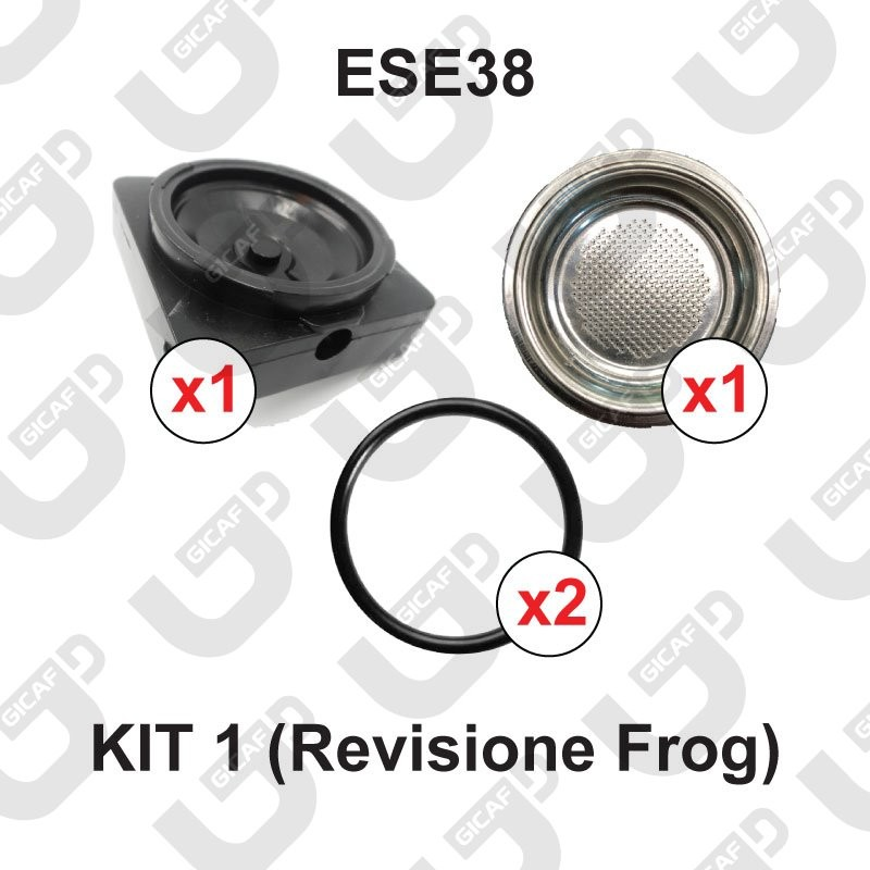 KIT 1 Revisione (ese38) - FROG